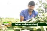 ಅನ್ನದಾತ: ವಿದೇಶಕ್ಕೂ ರಫ್ತಾಗುತ್ತಿರೋ ಭಾರತದ ತರಕಾರಿ